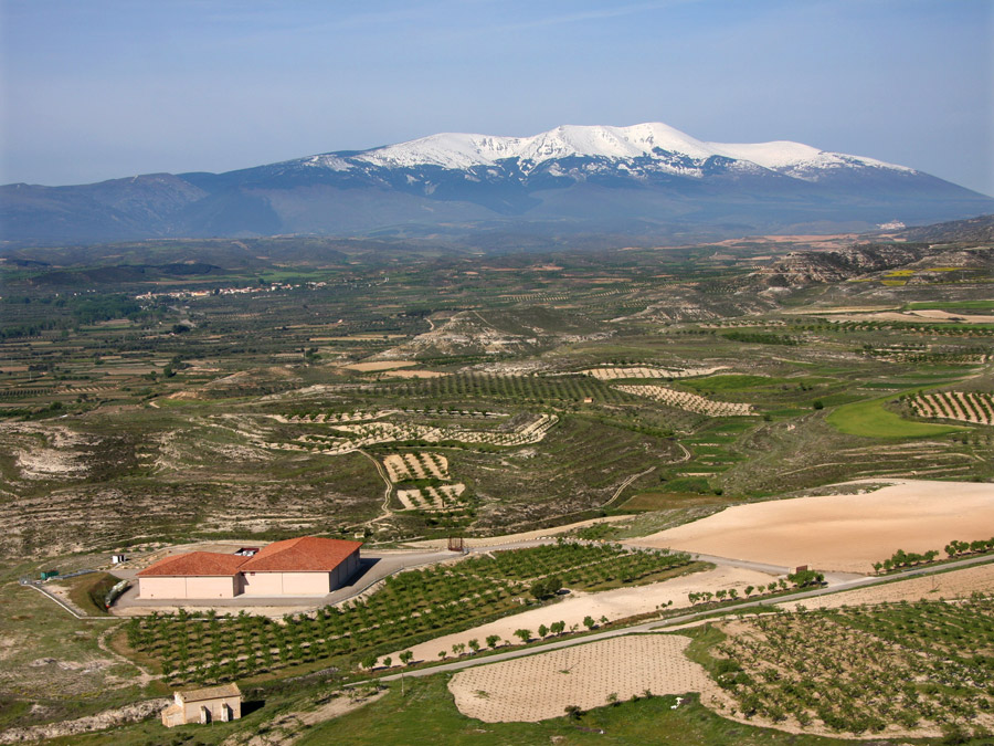 Bodega Alto Moncayo and Moncayo mountain